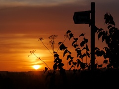 Sunrise in Nottinghamshire, Nottinghamshire Stock Footage