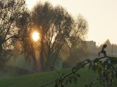 Sunset near Hardwick Park, Derbyshire Stock Footage