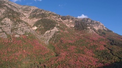 Aerial view of colorful foliage up the side of a mountain Stock Footage