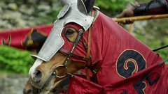 Knight Tournament on Horses Stock Footage