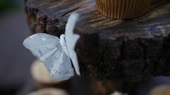Cupcakes with whipping cream and white artificial butterfly on a picnic party Stock Footage