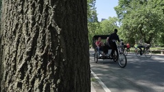 Central Park, Manhattan Stock Footage