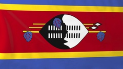 Flag of Swaziland waving in the wind, seemless loop animation Stock Footage