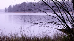 Grey autumn shore with sleet falling over the lake Stock Footage