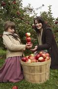 Mother and Daughter in Apple Orchard Stock Photos