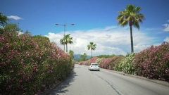 Driver's point of view, car driving along street with palms in resort city Stock Footage