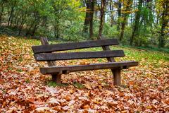 Autumn season , empty park bench with fall leaves. Stock Photos