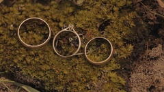 Three wedding rings lie on the grass and ants running around them. Stock Footage