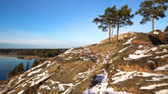 Scandinavian landscape. Several lonely pines on rock over the Baltic Sea. Dolly. Stock Footage
