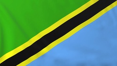 Flag of Tanzania waving in the wind, seemless loop animation Stock Footage