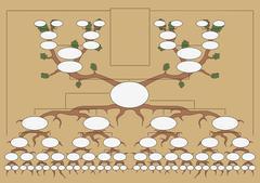 The genealogical tree Stock Illustration