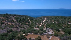 Aerial - Flying high above overgrown hills near the sea with old olive trees Stock Footage