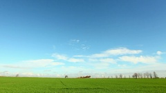 Green field - time lapse video Stock Footage