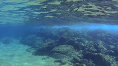 Jellyfish underwater in wavy waters, close to the surface of the sea Stock Footage