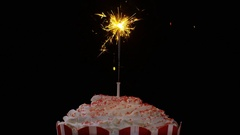 4K Sparkler burning until it dies out on a large cupcake Stock Footage