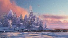 Snowy fir forest and frozen lake at sunset or sunrise 4K Stock Footage