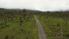 Flying above montane rainforest partially cleared for cattle pasture. Stock Footage