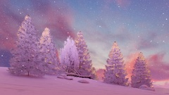 Snow covered firs under scenic sunset or sunrise sky 4K Stock Footage