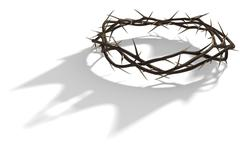 Crown Of Thorns With Royal Shadow Stock Illustration
