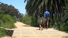 Family walks on boardwalk by palm tree on sunny day 2 Stock Footage