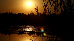Sunset on the lake (ocher color) Stock Footage