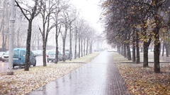 Snowy weather outdoors Stock Footage