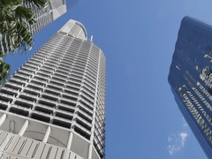 Palm Trees and City Skyscrapers, Brisbane, Queensland, Australia Stock Footage