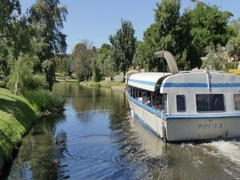Popeye cruising River Torrens, Adelaide, South Australia, Australia Stock Footage