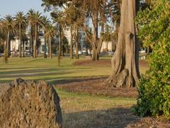 Catani Gardens, St Kilda, Melbourne, Victoria, Australia Stock Footage