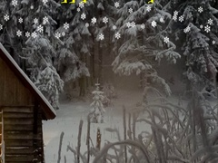Happy Holidays animation with snowflakes and winter landscape Stock Footage