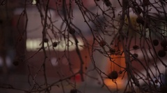 View of the City throught the tree in the evening Stock Footage