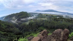 Timelapse of  mist movement in top of the forest Stock Footage