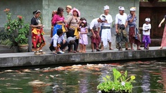 People fed decorative carp in pond. Sacred springs water temple. Bali, Indonesia Stock Footage