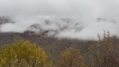 The dense fog in late autumn in the mountains of the Caucasus Stock Footage
