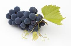 Red vine grapes Stock Photos
