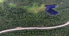 Bird's eye view of forest with lake, moorland and street Stock Footage