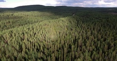 Drone flight over forest with lakes and moorland Stock Footage