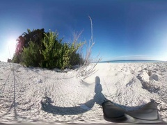 Tropical island beach Stock Footage