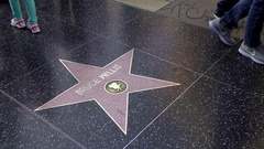 Bruce Willis star on street on Hollywood Boulevard famous Walk of Fame LA Stock Footage