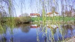 Häuser am Teich Stock Footage