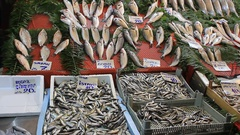 Fish stalls selling fresh catch seafood at a fish market Stock Footage