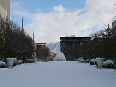 Mormon Temple Square winter fountain wedding bride DCI 4K 899 Stock Footage