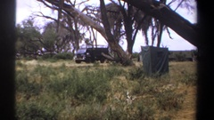 1969: gray jeep and black truck are parked by large trees in flat grassland by Stock Footage