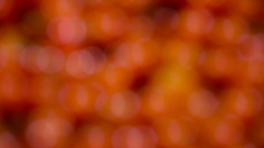 Small tomatoes in the supermarket Stock Footage