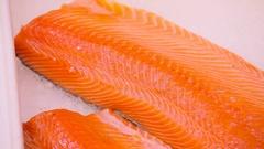 Salmon fillets on ice in supermarket Stock Footage