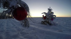 Beautiful New Year  sunrise and Christmas tree on field, time lapse 4K Stock Footage