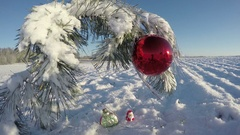 Snowy  New Year pine branch with Christmas bauble on field, time lapse 4K Stock Footage