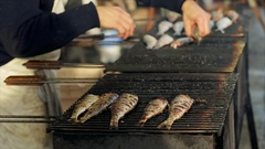 Grilled fish on a grill. Herring fair in north of France, Normandy. Delicio.. Stock Footage