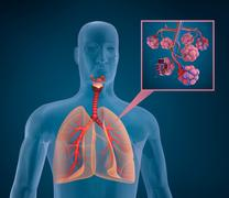 Anatomy of human respiratory system - blood saturating by oxygen Stock Illustration