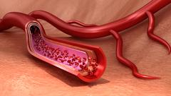 Blood vessel sliced macro with erythrocytes , Medically accurate 3D illustr.. Stock Illustration